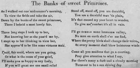 Broadside ballad entitled 'The Banks of Sweet Primroses'