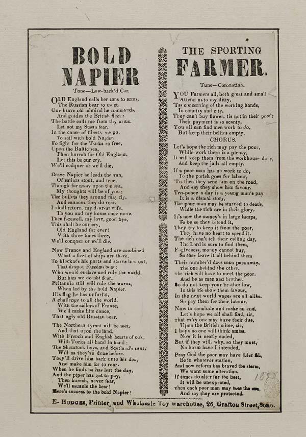 (42) Bold Napier