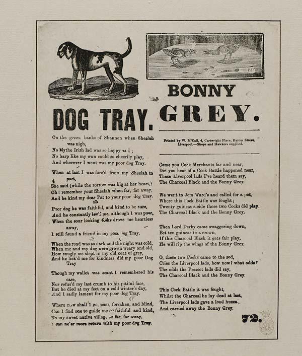 (19) Dog Tray