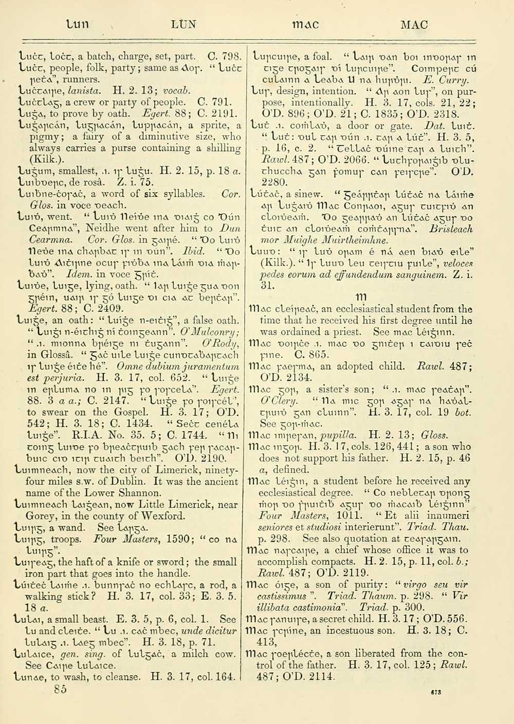 685) - J  F  Campbell Collection > Irish-English dictionary