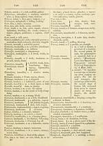 520) - J  F  Campbell Collection > Irish-English dictionary